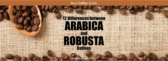 12 Differences between Arabica and Robusta coffees